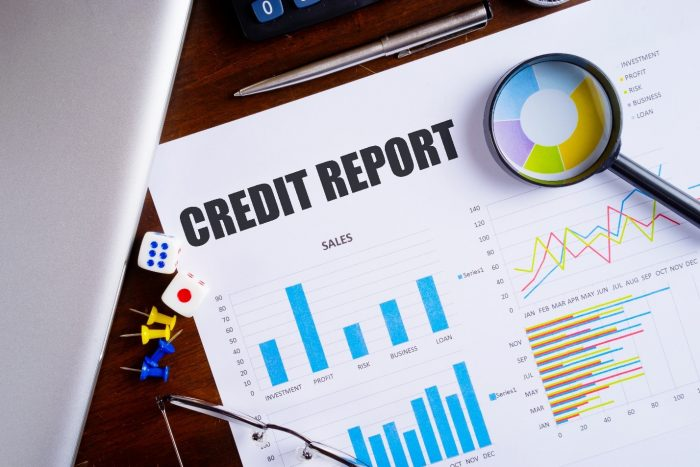 Ins And Outs Of Credit Report