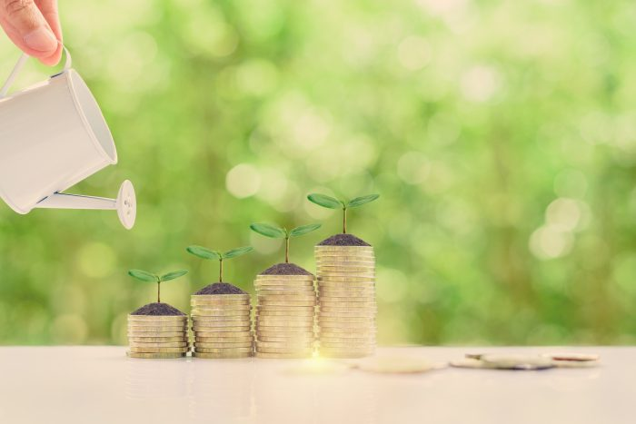 SMALL FUNDING TO EMPOWER INBORN BUSINESSES