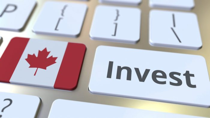 Successful Business Venture In Yukon